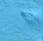 Blue lagoon Multi Surface Satin Inom-/utomhus