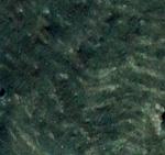 Kalkfärg - Dark Forest