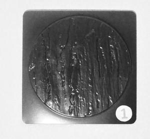 Kompassros / Soluppgång form 1
